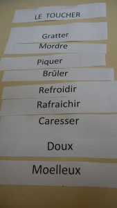 ANNEXE 5 étiquettes LE TOUCHER
